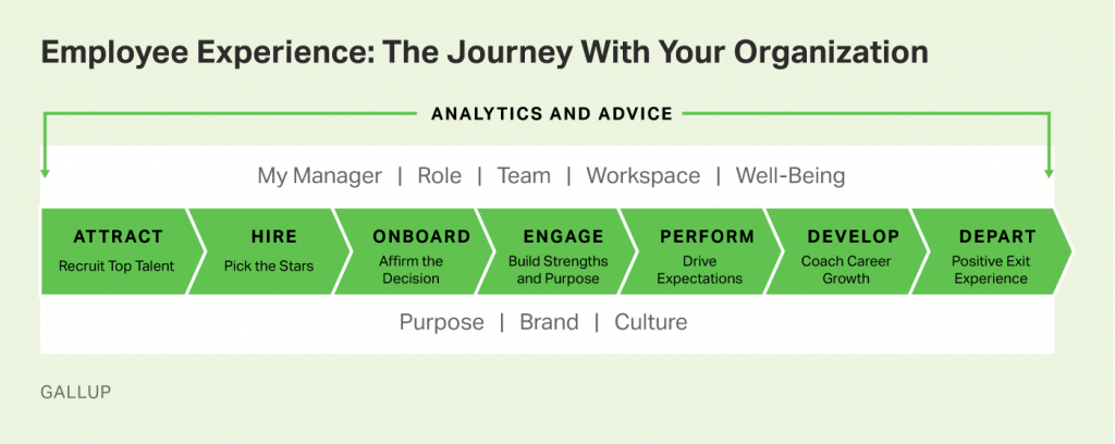 employee experience jpurney organization Gallup